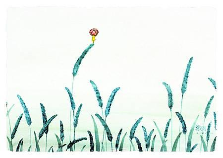 狗尾草2.jpg