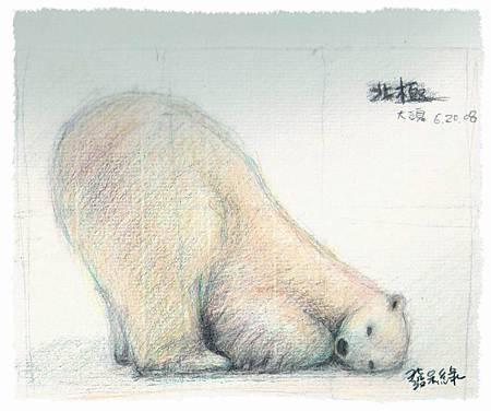 調整大小熊2.jpg