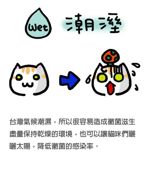 5(4).jpg