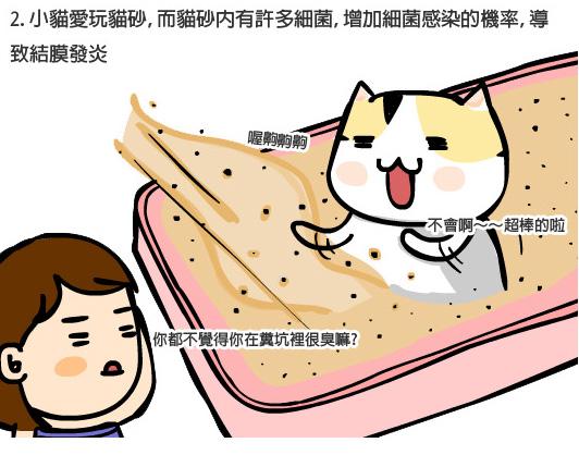 貓咪眼疾3拷貝.jpg