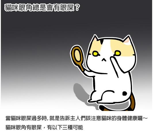 貓咪眼疾4拷貝.jpg