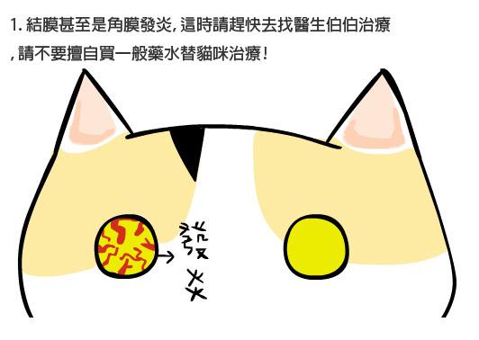 貓咪眼疾5拷貝.jpg