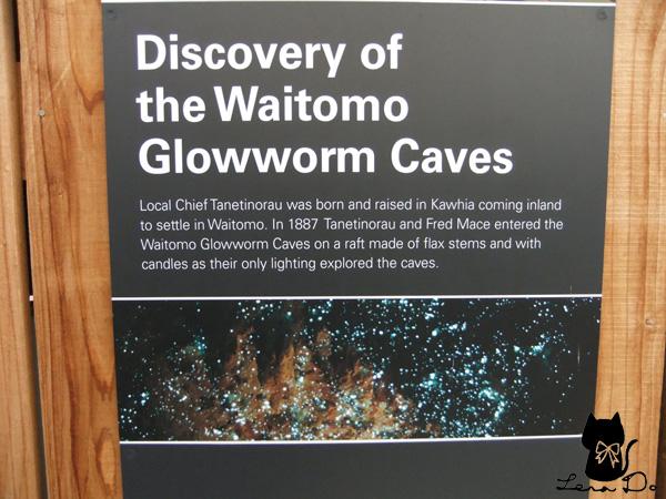 GLOWWORM CAVES拷貝.jpg