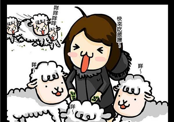 綿羊大便1拷貝.jpg