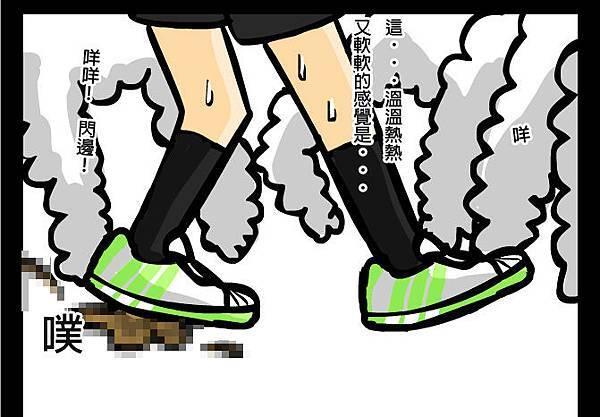 綿羊大便3拷貝.jpg