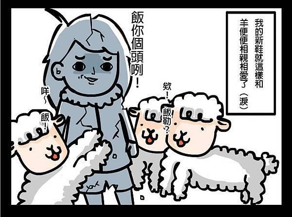 綿羊大便4拷貝.jpg