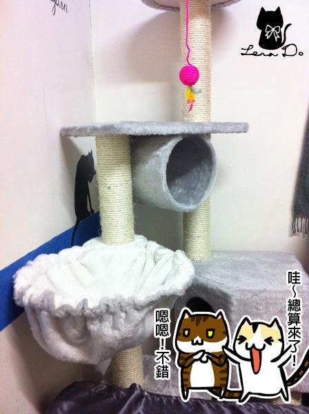貓跳台1拷貝.jpg