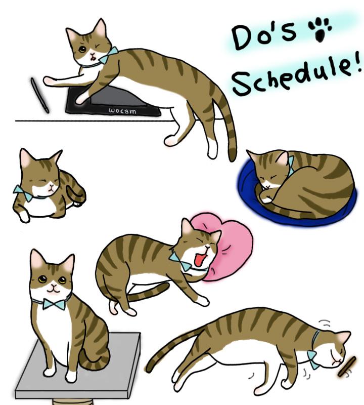 DO'S schedule.jpg