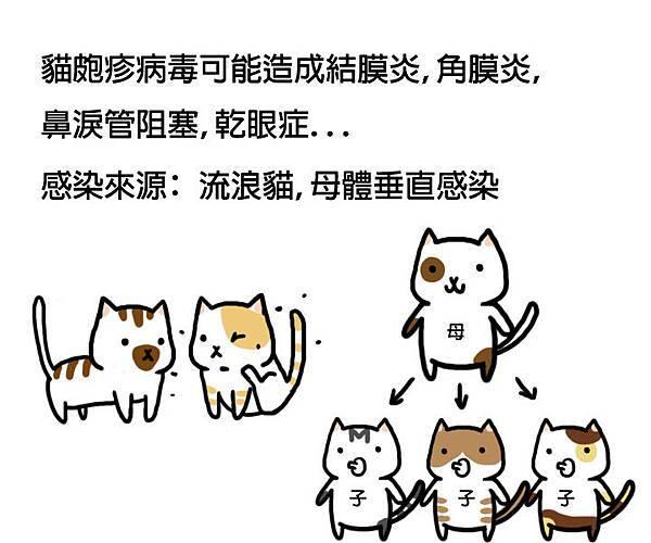 貓皰疹病毒拷貝