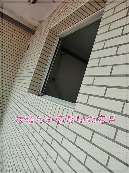 CIMG9538.JPG