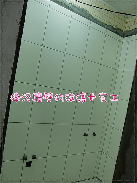 CIMG9540.JPG