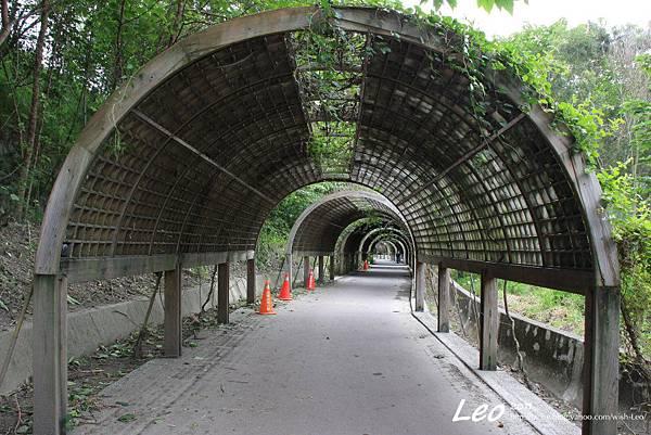 台東森林公園.花隧道 002