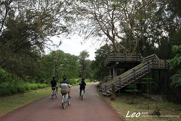 台東森林公園.樹屋
