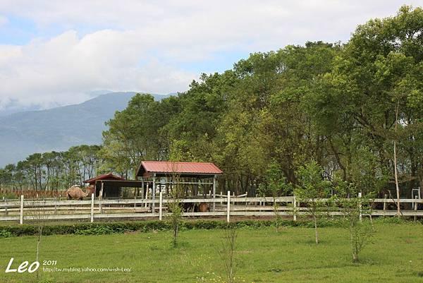 吉蒸牧場 (10)