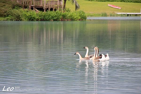 夢幻湖中的雲山水 (23)