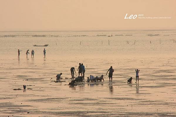 十七公里海岸線夕陽 (4)