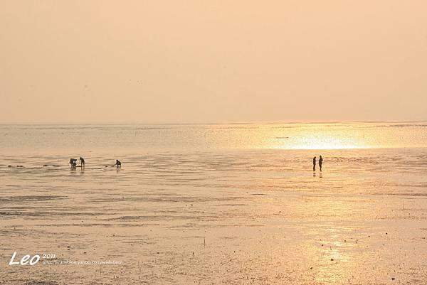 十七公里海岸線夕陽 (18)