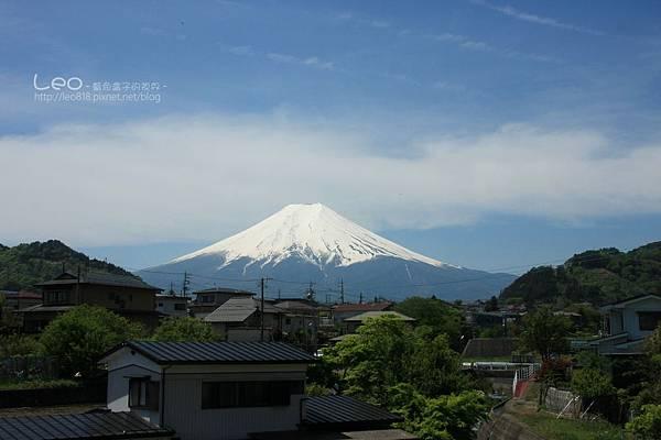 東京自助旅行·河口湖 (10)