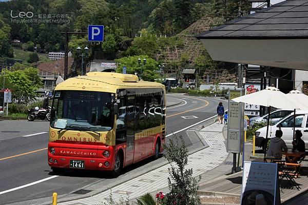 天上山公園眺望富士山與河口湖 (2-2)