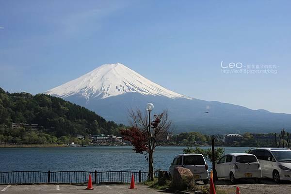 河口湖‧富士吟景 (14-1)