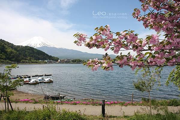 河口湖‧富士吟景 (72)
