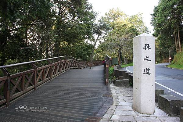 阿里山-塔塔加-東埔溫泉 (29)