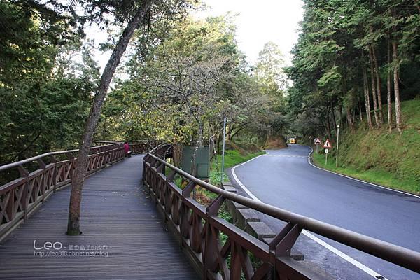 阿里山-塔塔加-東埔溫泉 (30)