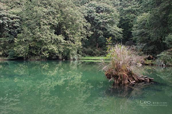 阿里山-塔塔加-東埔溫泉 (221)