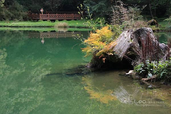 阿里山-塔塔加-東埔溫泉 (225)