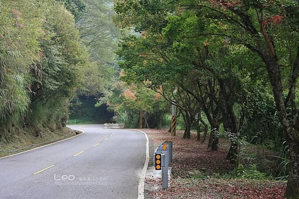 阿里山-塔塔加-東埔溫泉 (353)