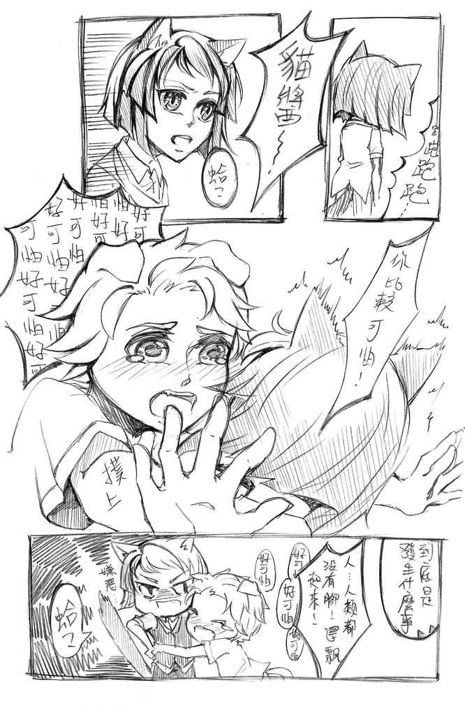 貓狗七月01