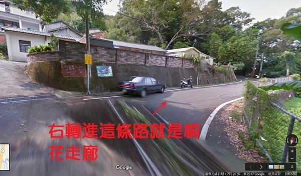 右轉進這條路就是桐花走廊(600x351).jpg
