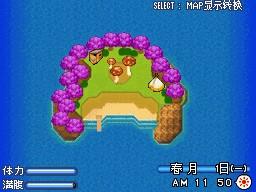 蘑菇島.jpg
