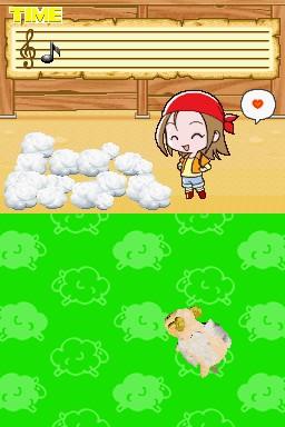 觸摸奔跑的綿羊2.jpg