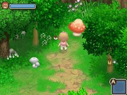 5彈跳蘑菇.jpg