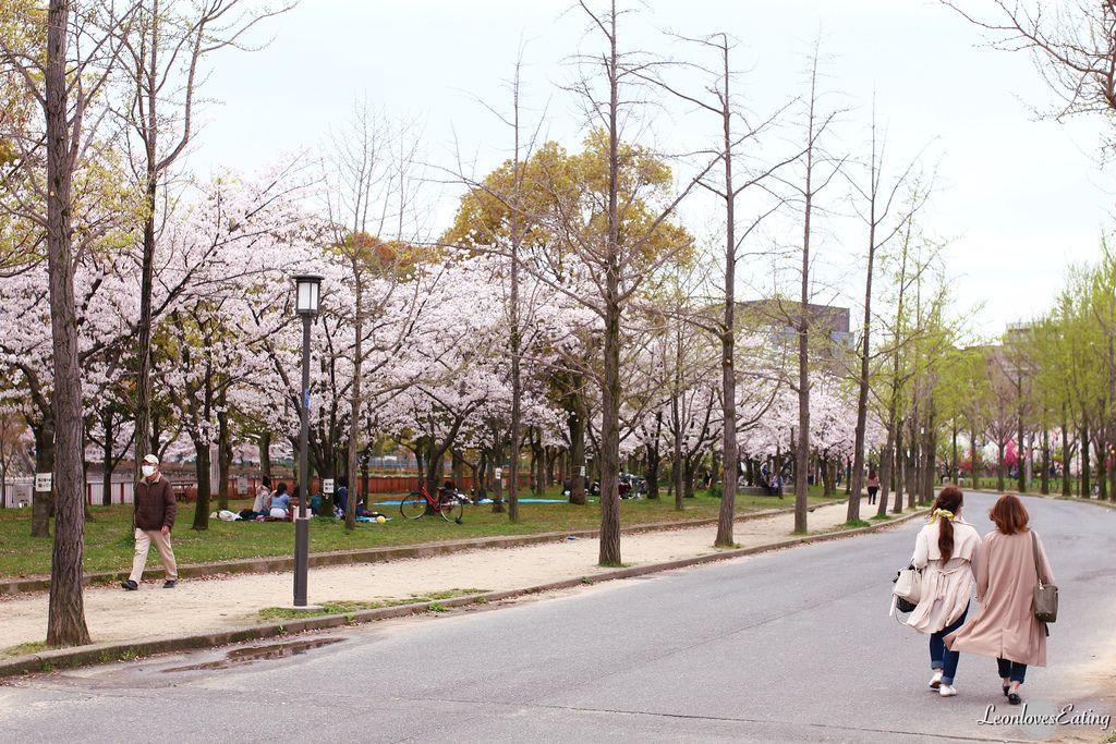 大阪城公園IMG_9506_20160404.jpg
