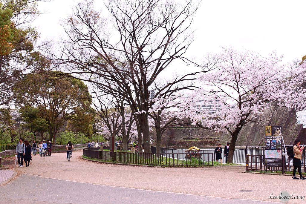 大阪城公園IMG_9520_20160404.jpg