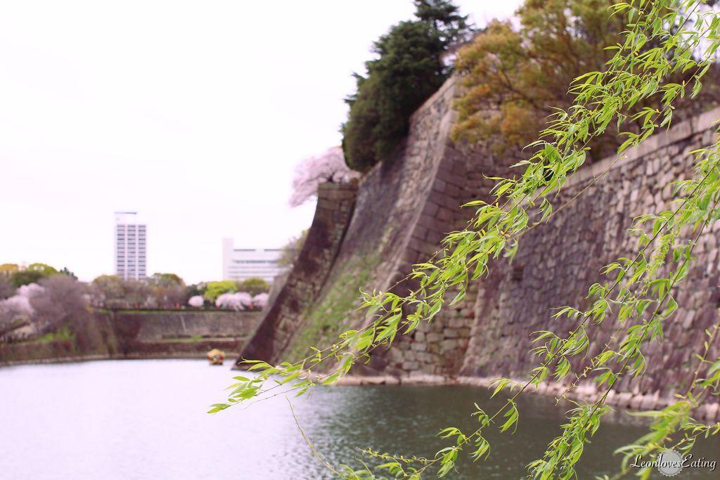 大阪城公園IMG_9522_20160404.jpg