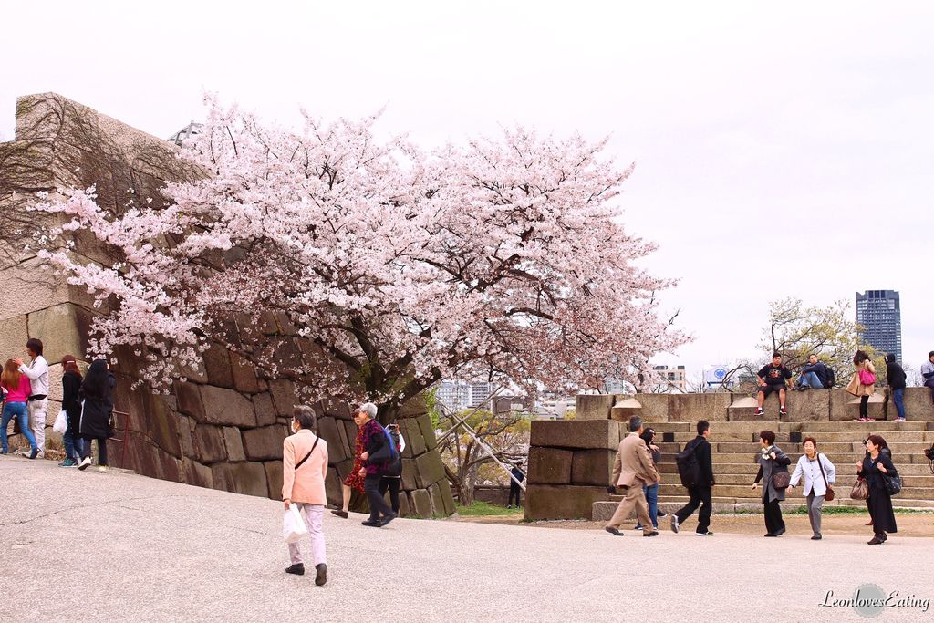 大阪城公園IMG_9555_20160404.jpg