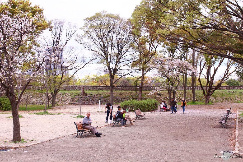 大阪城公園IMG_9549_20160404.jpg