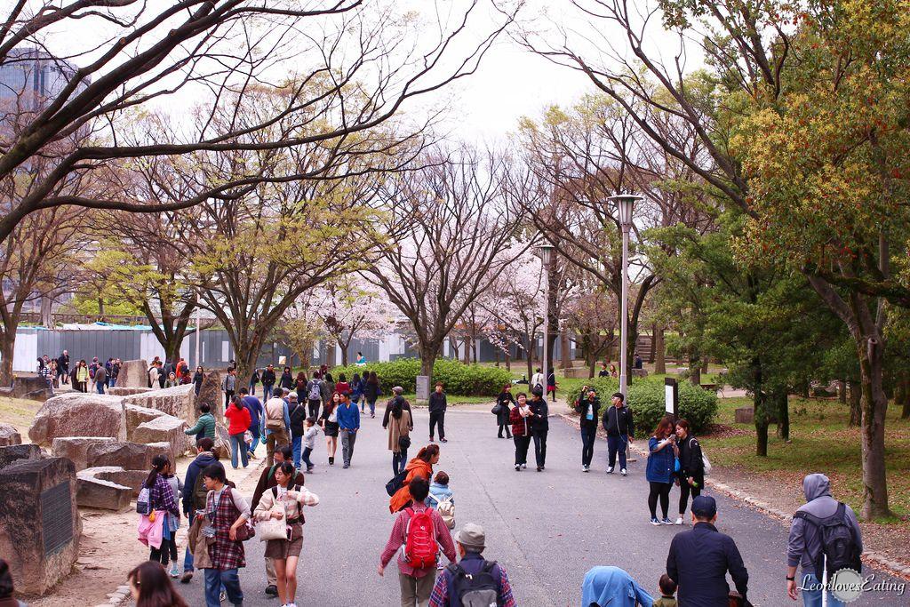 大阪城公園IMG_9553_20160404.jpg