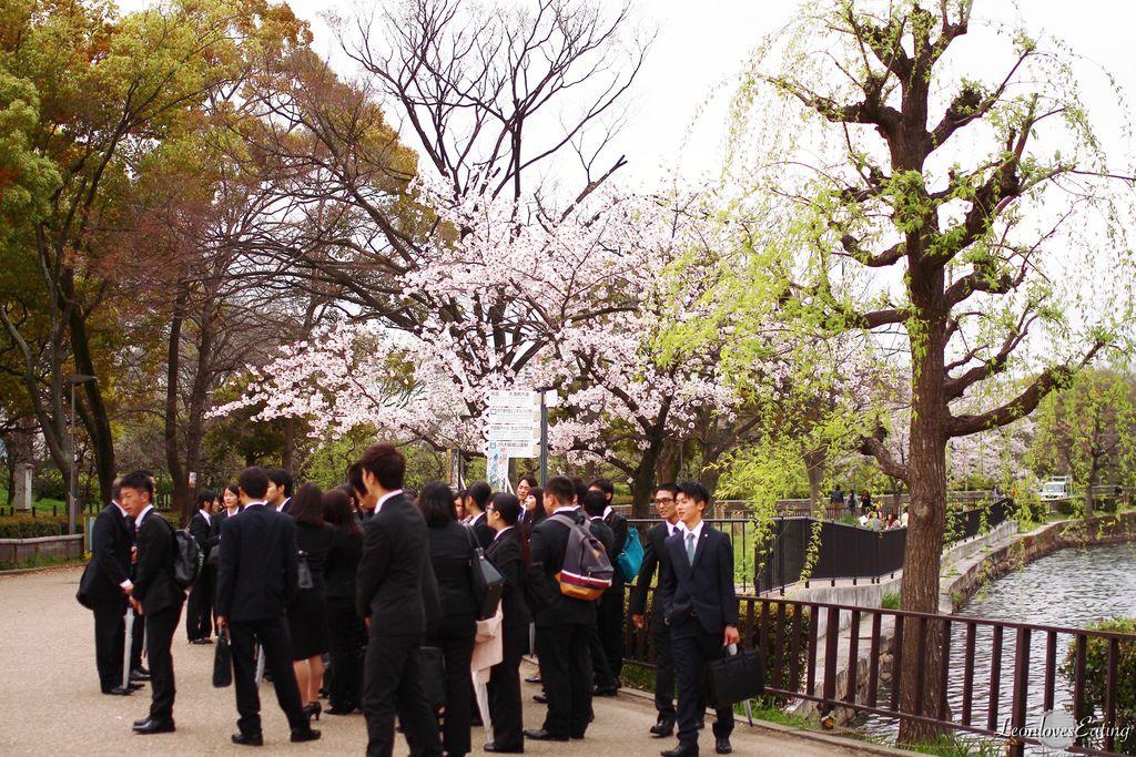 大阪城公園IMG_9613_20160404.jpg