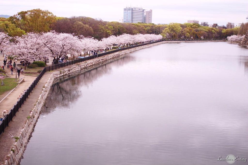 大阪城公園IMG_9620_20160404.jpg