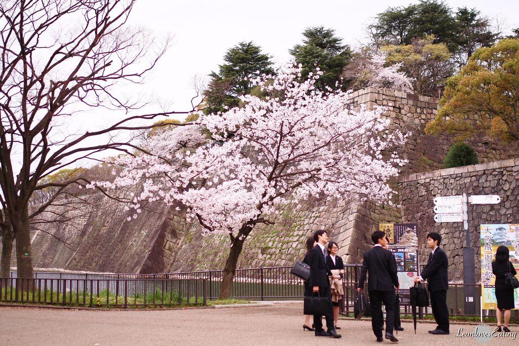 大阪城公園IMG_9617_20160404.jpg