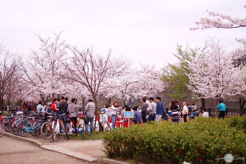 大阪城公園IMG_9625_20160404.jpg