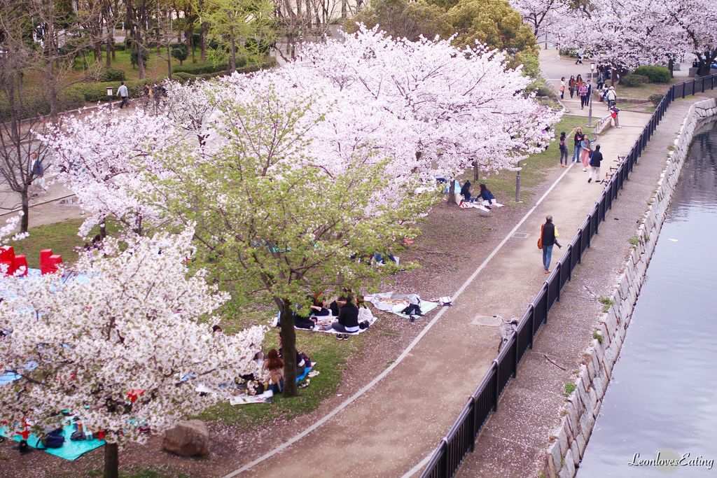 大阪城公園IMG_9623_20160404.jpg