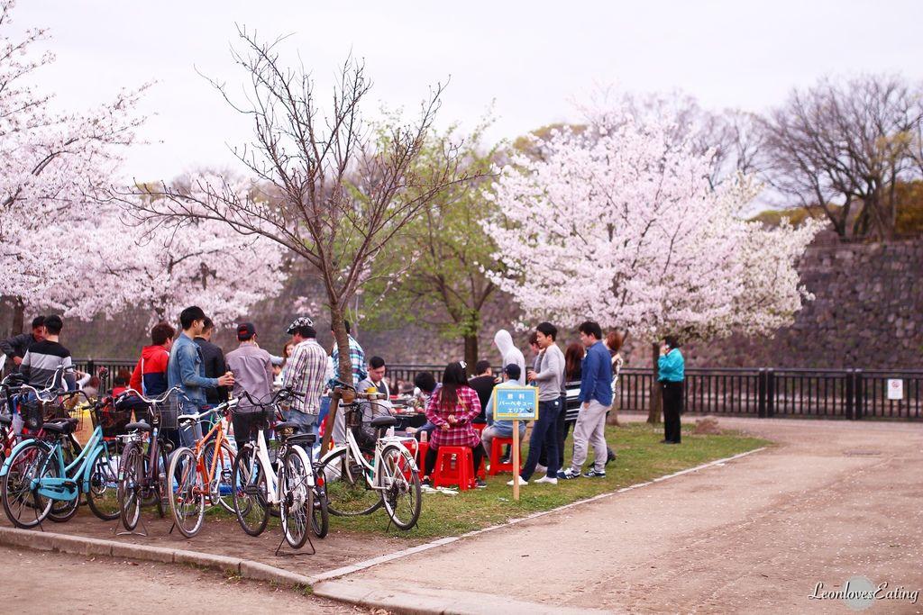 大阪城公園IMG_9626_20160404.jpg
