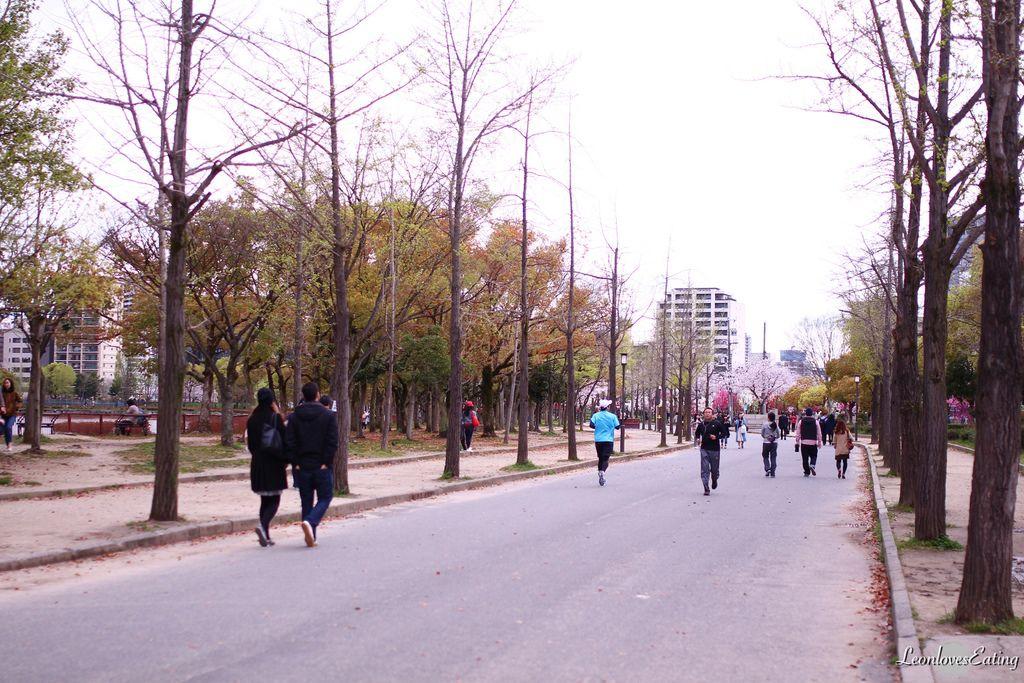 大阪城公園IMG_9631_20160404.jpg