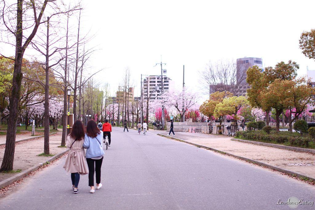 大阪城公園IMG_9633_20160404.jpg