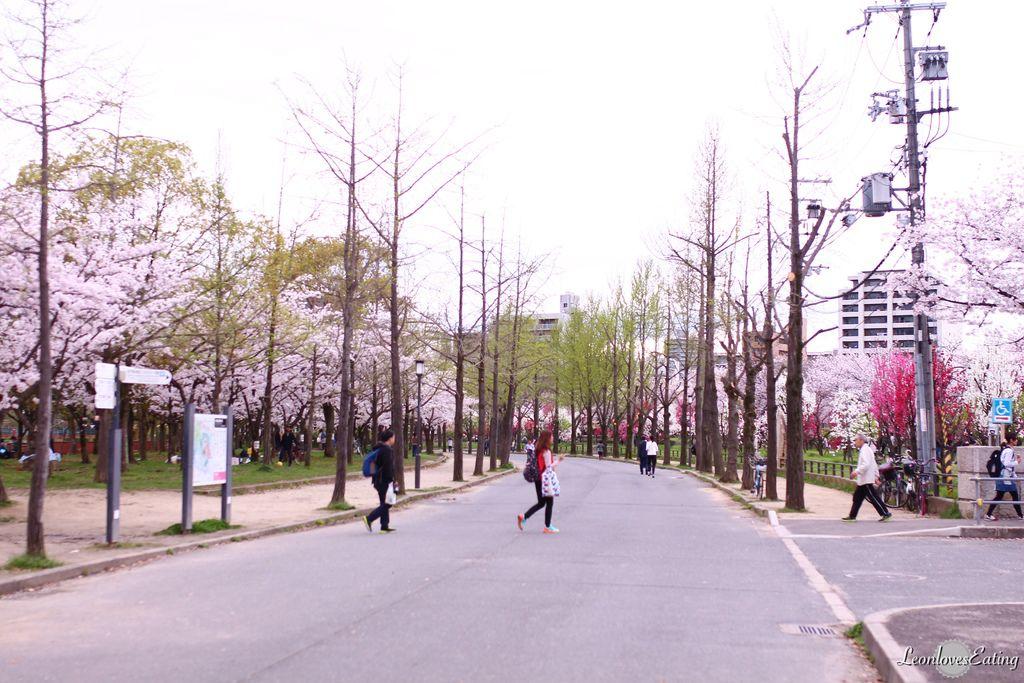 大阪城公園IMG_9637_20160404.jpg